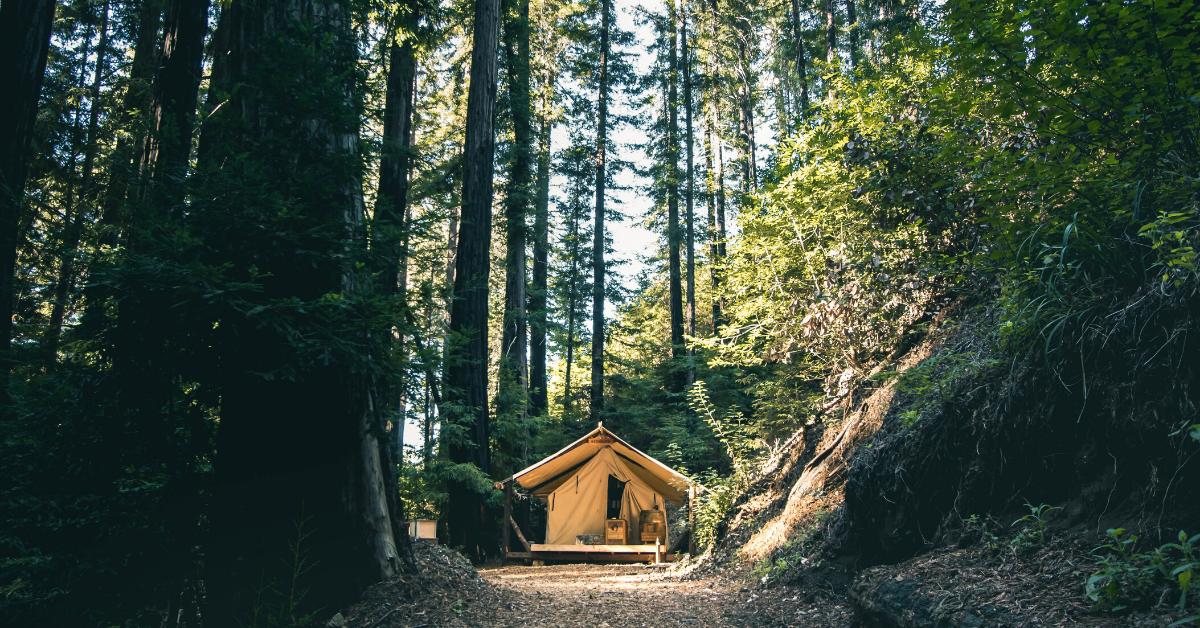 Unieke glamping slaapplek op de camping